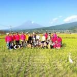 富士山れんげ祭りに向けてのれんげの種まき!