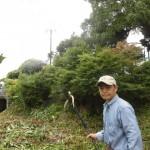 浮島釣り場公園での整備活動