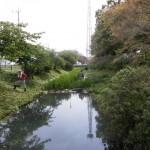 地域での浮島沼つり場公園整備の取り組み進む!!
