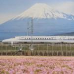 富士市を代表する写真「富士山と新幹線とれんげ」