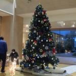 病院でのクリスマスツリーを見て想う事