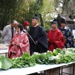 三日市浅間神社の大鳥居さんは伊豆山神社で活躍していた!!