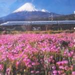 第4回富士山れんげまつりのおしらせ