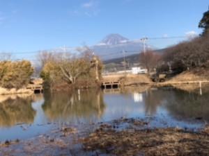 富士山114